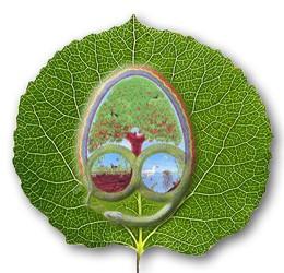 HvdT-Logo-Permacultuur-NL